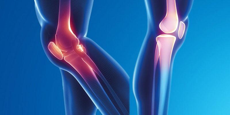 Artroskopi ve Diz Cerrahisi Bölümü