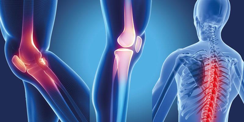 Ortopedi ve Travmatoloji Bölümü